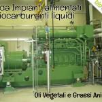 Oli Vegetali e Grassi Animali: Guida Impianti a BioCarburanti BioWATT