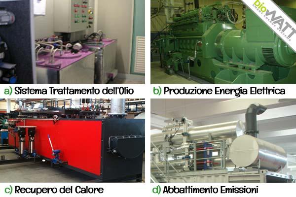 biowatt-cogenerazione-biocarburanti