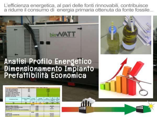 Efficienza Energetica: l'approccio di BioWATT