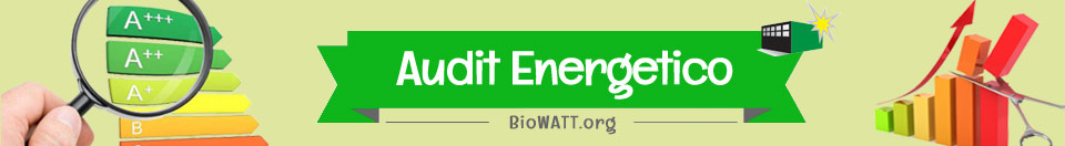 BioWATT Energy Audit