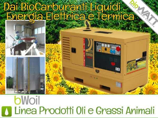 Prodotti BioWATT alimentati a Biocarburanti liquidi: oli vegetali e grassi animali