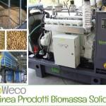 Impianti a Biomassa Solida e Materiale Legnoso – Prodotti BioWATT