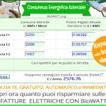 Snello e Rapido – Calcola con BioWATT il Risparmio sulla tua Bolletta Elettrica
